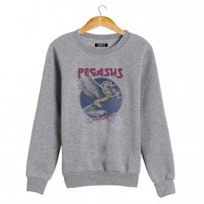 PEGASUS Sweatshirt man